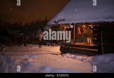 Zakopane sledging horses mountainous cottage Sleigh ride - Stock Photo