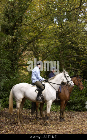 Young riders ride out in Wychwood Forest Oxfordshire United Kingdom - Stock Photo