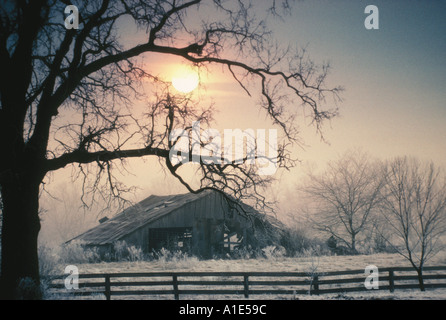 Old abandoned wooden barn in rough shape with field of hoarfrost and ice in milky sunlight, Midwest USA - Stock Photo
