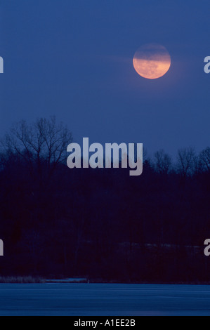 rising full moon over lake and trees - Stock Photo