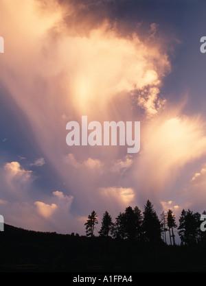 Storm cloud with rain Lassen Volcanic National Park California - Stock Photo