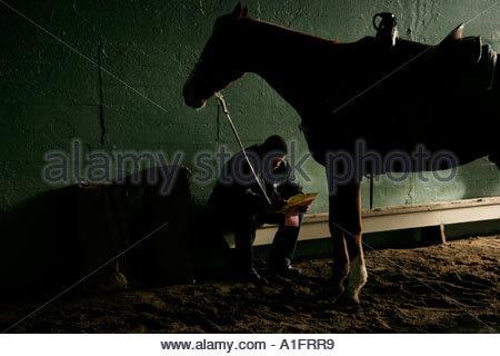 Horse Trainer and Horse Passing Time Before Race Santa Anita Race Track Arcadia California - Stock Photo