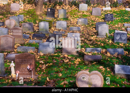 USA New York Westchester County Scarsdale Pet Cemetery - Stock Photo