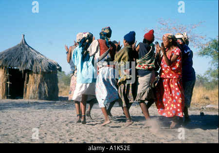 Deniui village near Tsumkwe in Kalahari Desert East Namibia one of most heavily studied peoples San bushmen have - Stock Photo