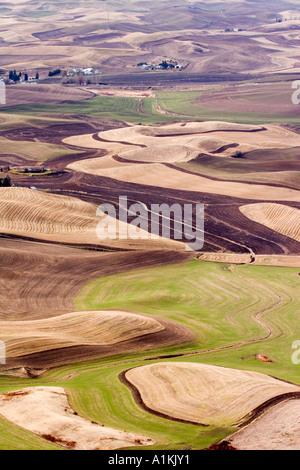 Contour farming seen from Steptoe Butte Washington - Stock Photo