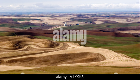 Harvested fields winter wheat and fallow fields seen from Steptoe Butte in Whitman County Washington - Stock Photo