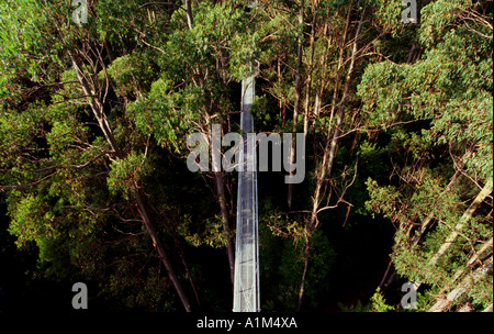 An Aerial view of the Otway Fly Center, Australia. March 2005 - Stock Photo