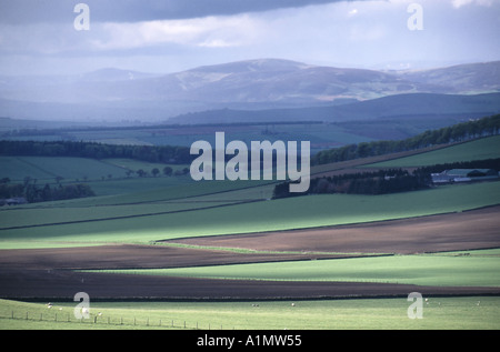 Tayside rural landscape with clouds and sunshine casting shadows across fields with mountain range distant - Stock Photo