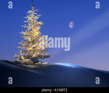 DE - BAVARIA: Christmas in the Allgäu - Stock Photo