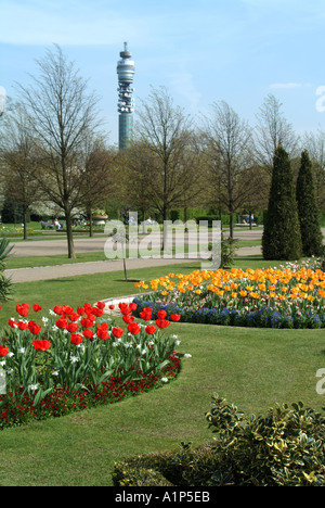 London Regents Park springtime flower beds displaying bulbs in bloom BT telecommunications tower beyond - Stock Photo