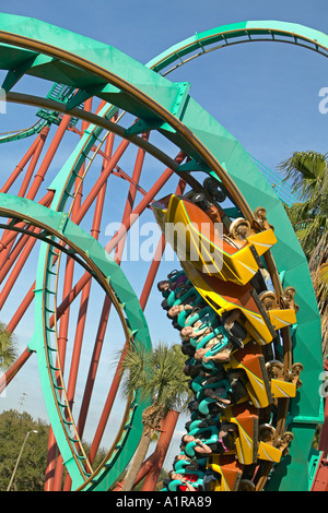 Riders loop up side down on Kumba roiller coaster Busch Gardens Tampa Florida USA - Stock Photo