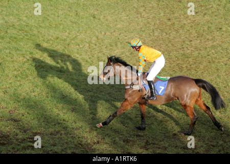 Horse and Jockey at Ludlow Racecourse, Shropshire - Stock Photo