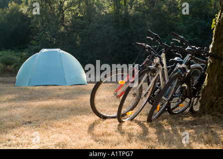 Camping - Bicycles leaning against a tree trunk with tent in background at dusk on a summer holiday. - Stock Photo