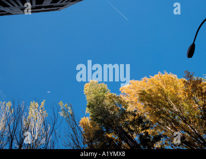 Spring view, Pantin, France. - Stock Photo
