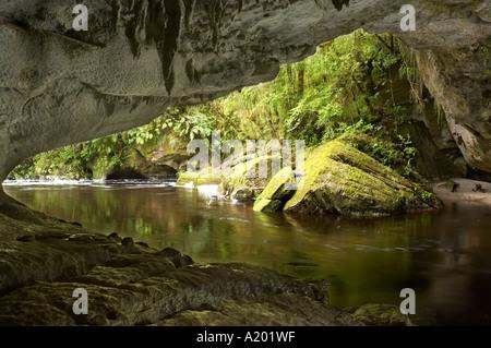 Moira Gate Arch Oparara Basin near Karamea Kahurangi National Park West Coast South Island New Zealand - Stock Photo