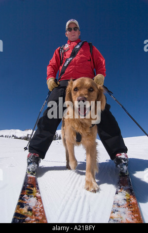 An avalanche rescue dog running between the legs of a ski patroller skiing at Squaw Valley in California - Stock Photo
