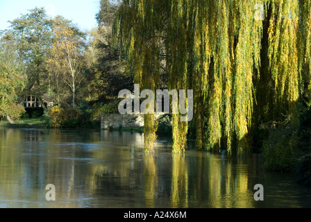 OXFORD, UK-01 JULY: Weeping Willow trails its leaves in the water of the River Thames on 01 July 2007 at Iffley - Stock Photo