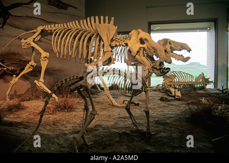 Agate Fossil Beds National Monument near Harrison, Nebraska. - Stock Photo