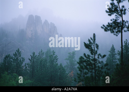 Rock formations in the Black Hills of South Dakota. - Stock Photo