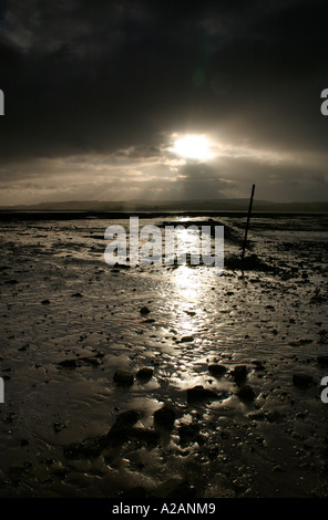 The Exe Estuary Devon, last light on new years day. - Stock Photo