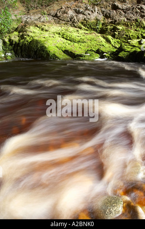 Oparara River Oparara Basin near Karamea Kahurangi National Park West Coast South Island New Zealand - Stock Photo