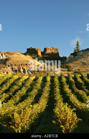 Mt Difficulty Vineyard and historic sluicings Bannockburn Central Otago South Island New Zealand - Stock Photo