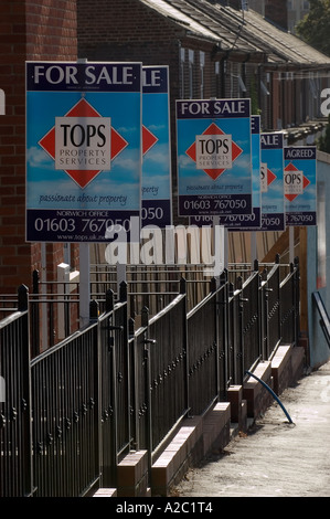 ESTATE AGENTS FOR SALE BOARDS IN NORWICH, NORFOLK, UK - Stock Photo