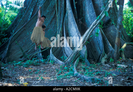 boys from a Yagua Tribe living near Iquitos using the lianas of a giant tribe as swings - Stock Photo