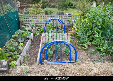 A garden bed A bed frame used whimsically to define a garden bed ...