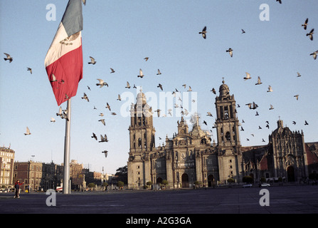 Birds flying over Mexico City Zocalo (main square), cathedral in the background, Mexican flag in foreground - Stock Photo