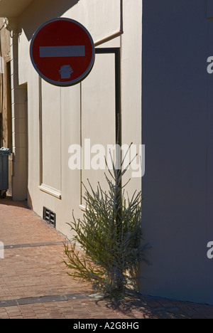 a detail of street corner with discarded christmas tree sitting beneath no entry sign - Stock Photo