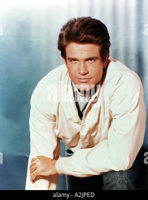 WARREN BEATTY b 1937 American film actor here about 1973 - Stock Photo
