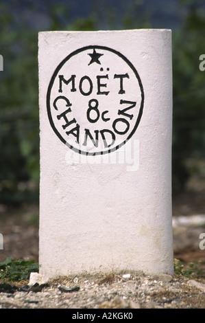 Moet et Chandon Vineyard Epernay Champagne France - Stock Photo