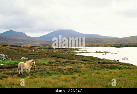 Hebridean island of South Uist in the Outer Hebrides, Scotland, UK. Over Loch Druidibeg toward mountain of Hecla. - Stock Photo