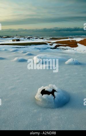 Frosted coastal landscape at the island Hankø, Østfold fylke, Norway. - Stock Photo