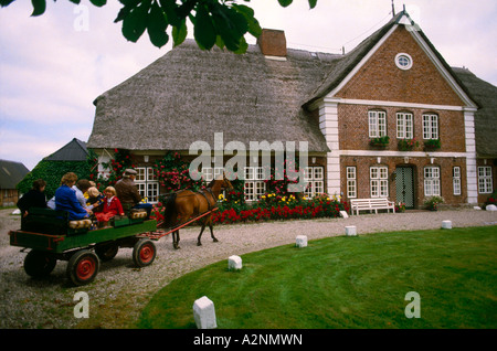 Group of people on carriage Hohwacht Schleswig-Holstein Germany Europe - Stock Photo