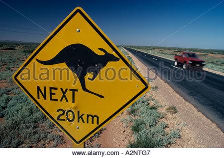 Bullet ridden sign in the Northern territory warning motorists of kangaroos. - Stock Photo