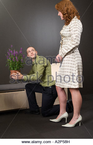 Office workers with a plant - Stock Photo