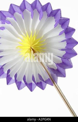 Folding paper flower against white background stock photo 10573924 folding paper flower against white background stock photo mightylinksfo