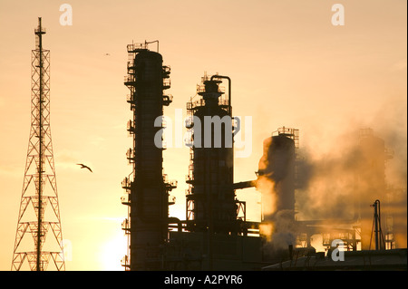 a gull flying past emmissions from a petrochemical plant at Midlesborough,  Teeside, at Dawn, UK - Stock Photo