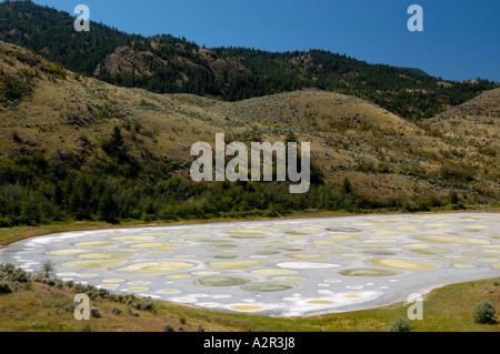 Spotted lake in Osoyoos desert Okanagan valley British Columbia Canada - Stock Photo