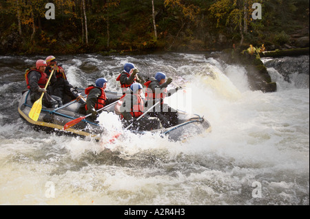 Rafting on Myllykoski rapids on the Pieni Karhunkierros trail in Oulanka National Park, Kuusamo, Finland - Stock Photo