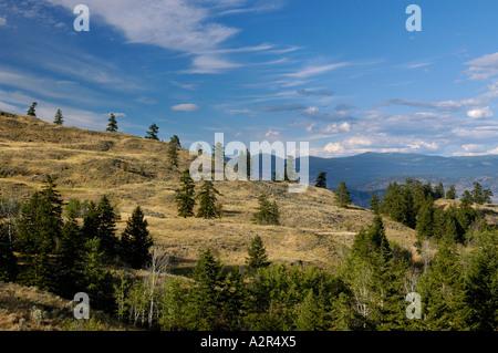 Mount Kobau grasslands over the Okanagan valley British Columbia Canada - Stock Photo