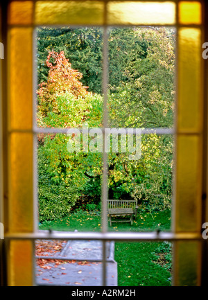 A view looking through a Georgian house with yellow glass onto a back garden in early autumn, Maida Vale, London, - Stock Photo