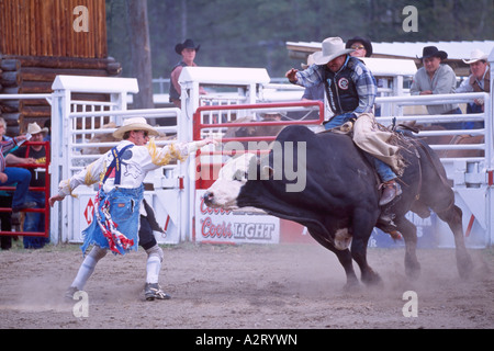 Rodeo Clowns Bull Riding Competition Chaffee County Fair