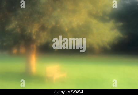 Atmospheric view of a bench beneath a Common beech or Fagus sylvatica tree on a late summer evening at sunset - Stock Photo