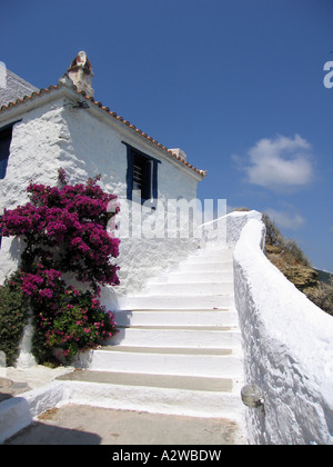 Steps leading up to white cottage with clear blue sky and bougainvillaea in foreground Skopelos Greece - Stock Photo