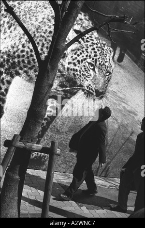 Japanese pedestrians pass a leopard on a billboard advertising Cartier jewellery, Ginza, Tokyo, Japan. - Stock Photo