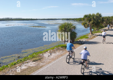 BICYCLING ON WILDLIFE DRIVE IN J N DING DARLING NATIONAL WILDLIFE REFUGE ON SANIBEL ISLAND FLORIDA - Stock Photo