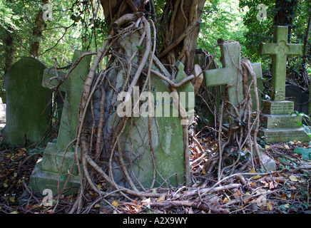 Overgrown crosses in Highgate cemetery - Stock Photo